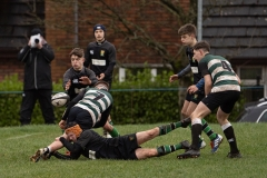 d60a0ea7-n7-20-2-20-sullivan-rugby-3