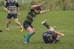 77ff7144-n17-9-1-20-holywood-rugby-3