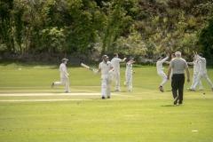 5934dec3-n14-16-5-19-holywood-cricket-adair
